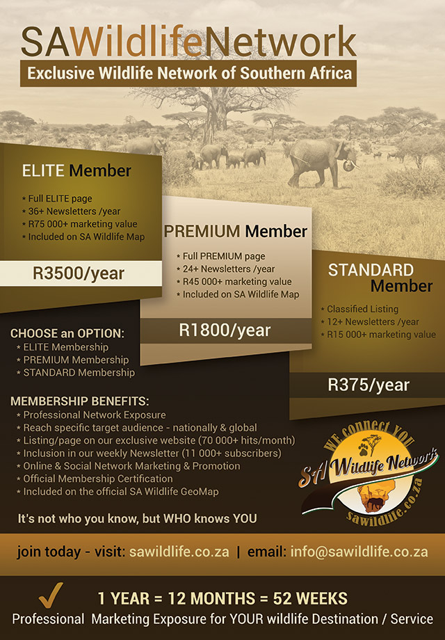 SA Wildlife Network