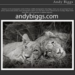 Andy Biggs Photo Safaris