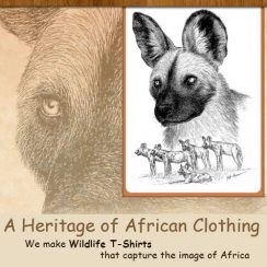 A Heritage of African Clothing